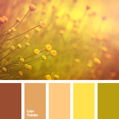Decorating With The Color Orange. Trendy Decorating Color ...