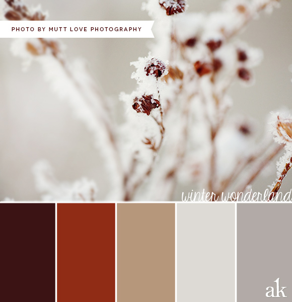 Decor Color Scheme